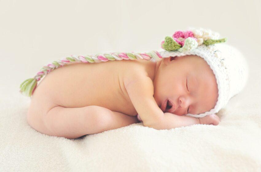 Bebek gelişiminde sindirim sisteminin ve fermente gıdalarla beslemenin önemi nedir?