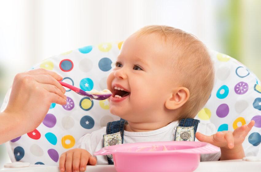 Bebek Beslenmesinde Ek Gıdaya Başlama (6-9 Ay)